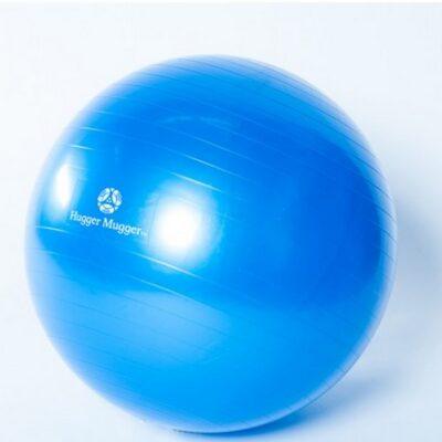 Exercise_Ball-Hugger_Mugger-blue