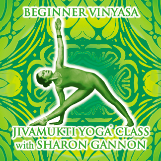 Jivamukti Beginner Vinyasa Vol 2 – CD/DVD Set